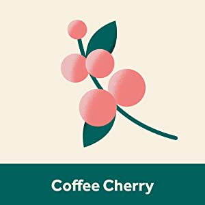 An icon of a Cofee Cherry